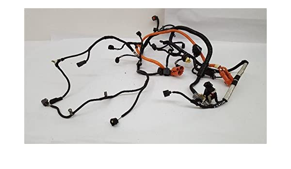Amazon.com: Engine Wire Harness Fits 2008 Ford Escape P/n ... on jeep wrangler wiring harness, ford factory wiring harness, chevy cobalt wiring harness, ford mustang wiring harness, ford truck wiring harness, ford contour wiring harness, ford taurus wiring harness, ford e350 wiring harness, ford f250 wiring harness, ford f 350 wiring harness, ford f150 wiring harness, ford model a wiring harness, ford escape trailer wiring diagram, ford bronco wiring harness, ford freestar wiring harness, ford f100 wiring harness, ford aspire wiring harness, ford expedition wiring harness, ford f650 wiring harness, ford excursion wiring harness,