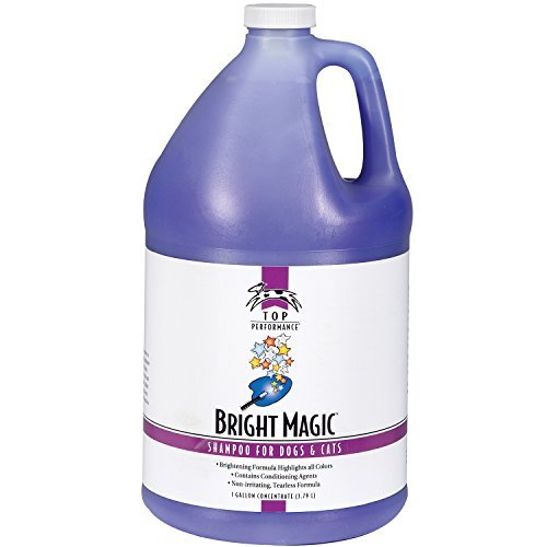- Top Performance Bright Magic Dog and Cat Shampoo, 1-Gallon by Top Performance