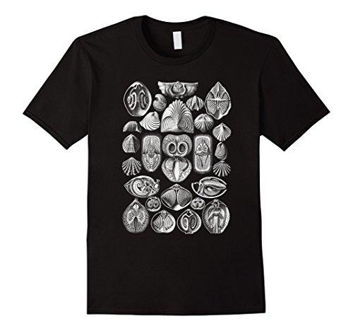 Mens Ernst Haeckel Spirobranchia Brachiopods Tee T-shirt XL Black