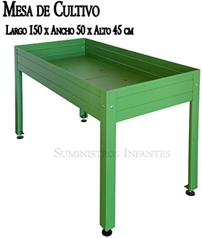 Suministros Infantes Mesa DE Cultivo Lacada Verde. Medidas: Largo ...