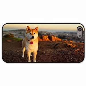 iPhone 5 5S Black Hardshell Case dog akita inu grass walk Desin Images Protector Back Cover
