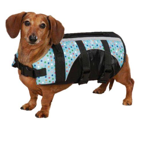 Guardian Gear ZM3036 06 52 Printed Pet Preserver Teacup, Polka Dot