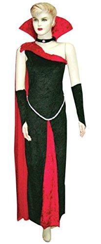 [Blood Raven Costume - Medium/Large - Dress Size 10-14] (Raven Dc Costume)