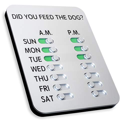 Did You Feed the Dog? (Best Things To Feed A Dog)