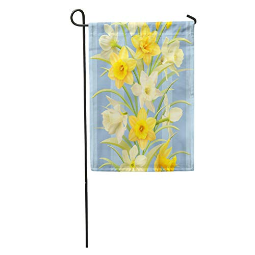 - Semtomn Garden Flag Yellow Flower Daffodils Blue Pattern Beautiful Bloom Blossom Bouquet Delicate Home Yard House Decor Barnner Outdoor Stand 12x18 Inches Flag