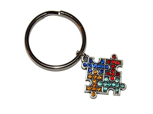 Autism Awareness Puzzle Piece Key Chain for Aspie, Mom, Family, Teacher - Awareness Key Chain