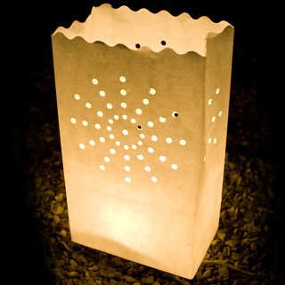 Fascola 30 Packs Luminary Paper Lantern, Candle Tealight Tea Light Bag Bags - Flame Resistant Paper for BQQ Party Wedding Reception Party and Event Decor by Fascola