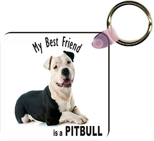 Rikki KnightTM My Best Friend is a Black and White Pitbull Dog Square Key Chains - Luggage Identifier Tags (Set of 4)