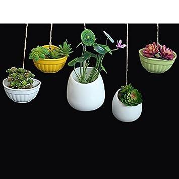 zantec Moderne und kreative Keramik Blumentopf zum Aufhängen ...