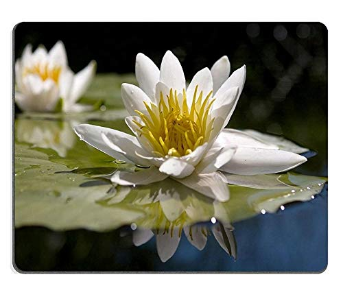 Flying Pig Men Mouse Pad Natural Rubber Mousepad Water Yellow White Lily ()