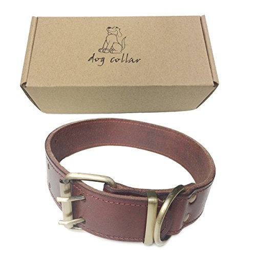 Real Leather Collar Friendly 26 41 5 product image