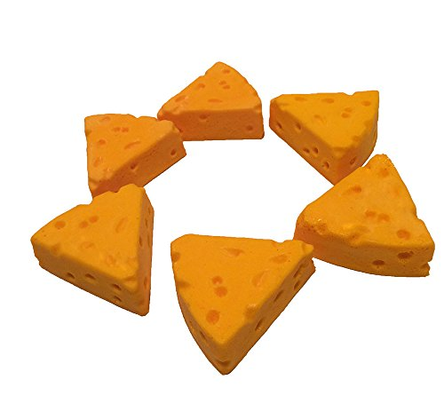 (CHEESEHEAD MAGNET SET OF 6)