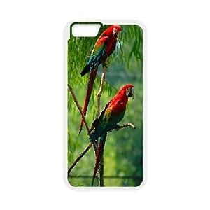 "kimcase Custom Parrot Case for iPhone6 Plus 5.5"""