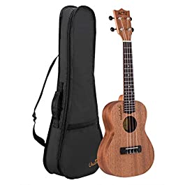 Professional 23 Inch Concert Ukulele for Child Mahogany Rosewood Small Child Guitar for Kids Ukulele Beginner (23 Inch)