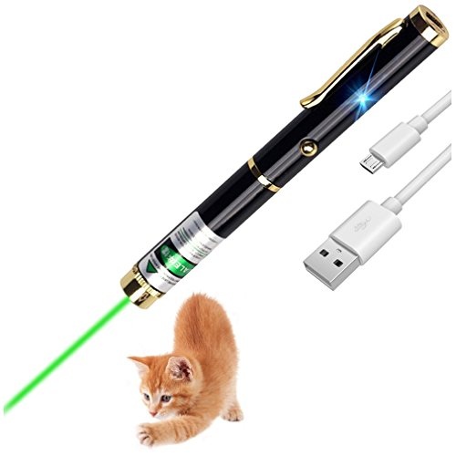 USB Rechargeable Cat Toys Interactive LED Light Pointer for Cats Catch Teasing Scratching Training Outdoor Tactics LED high Power Green Light Beam Interactive Training Tools ()