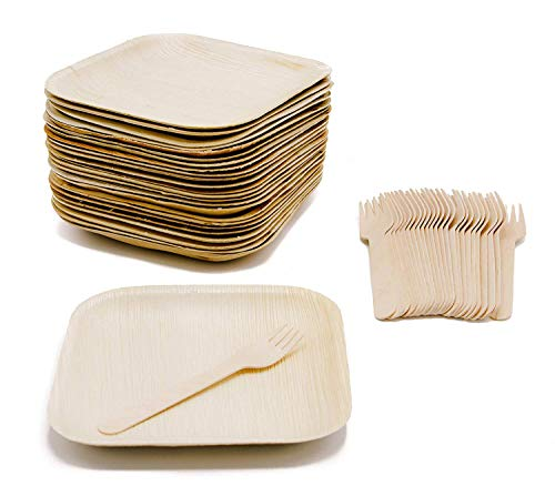 Ecodesign Disposable 50-Piece Palm Leaf Dinnerware - Appetizer Sides Dessert 7