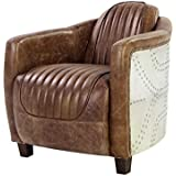 Acme Furniture ACME Brancaster Retro Brown Top Grain Leather and Aluminum Chair