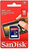Sandisk 16GB (10 Pack) SD Card Bundle SDHC Class 4