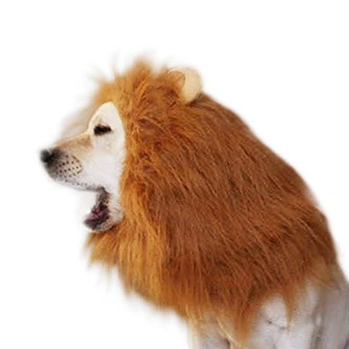 DUSHIDU Lion Mane Dog Wig Costume for Your Medium/Large Sized Dog - Soft Brown Fluffy Warm Polyester Wig, Pair Attached Ears, Friendly Lion Costumes for Pets, Party Lion Mask for Costume Contest ()