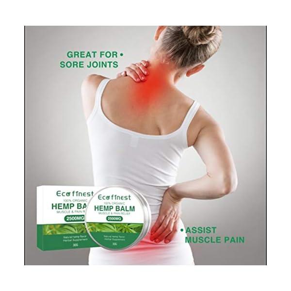 Hemp Pain Relief Salve – Premium Organic Hemp Ointment 2500mg, Rosemary Oil, Aloe Vera, Beeswax, Lavander Oil, Anti-Inflammatory for Joints & Muscles, Arthritis Pain, Max Strength Natural Solution