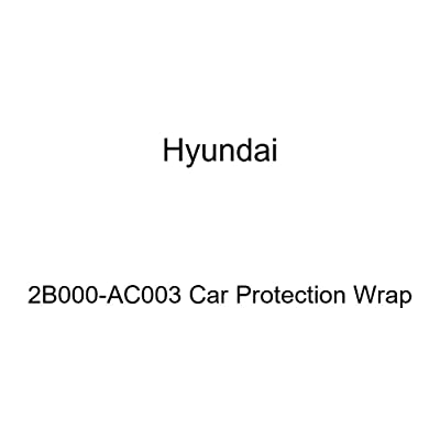 HYUNDAI Genuine 2B000-AC003 Car Protection Wrap: Automotive
