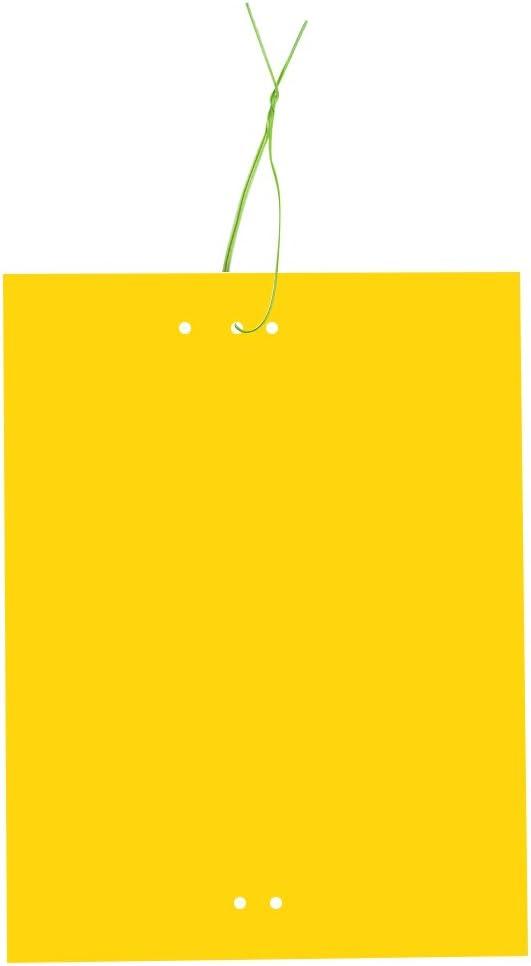 Huvai Juego DE 30trampas Doble Cara Pegatinas Amarillas para Insectos voladores–15,2x 20,3cm–Correas Elásticas fournies