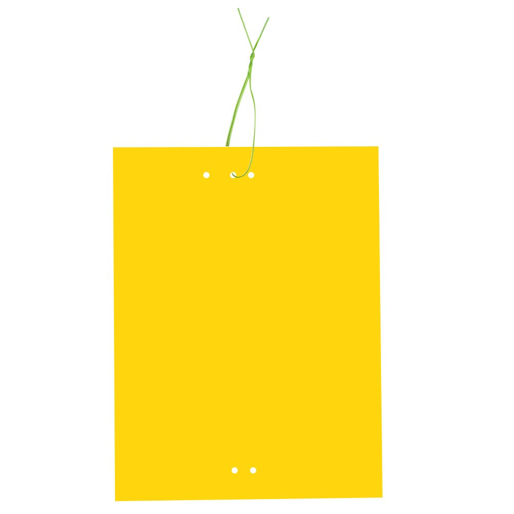 20 Pack Dual-Sided Yellow Sticky Traps for Flying Plant Insect (6x8 Inches, Twist Ties Included) product image