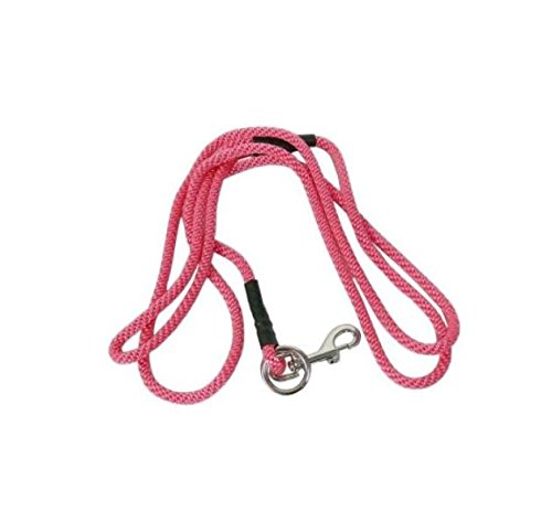 Amazon Com Love2pet No Pull Dog Leash Small Pink Pet Leashes