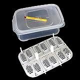 BeesClover 12 Holes Reptile E-gg Incubation Tray
