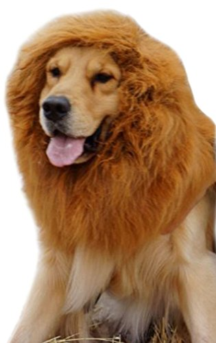 LRKC Lion's Mane Large Dog's Light Caramel Brown Costume Wig (Cheap Coloured Wigs)