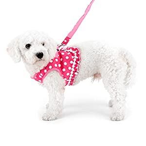 SMALLLEE_LUCKY_STORE No Pull Polka Dot Small Dog Puppy Cat Harness with Crown, Soft Mesh Padded Vest Harness and Leash Set for Girls,Pink M