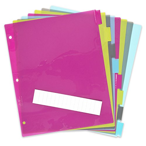 - DocIt 8 Tab Insertable Dividers for 3 Ring Binders, 8 Multicolor Plastic Dividers, Write-On Inserts (00788)