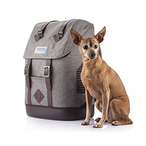 Kurgo Dog Carrier Backpack for Small Pets - Dogs & Cats | TSA Airline Approved | Cat | Hiking or Travel | Waterproof Bottom | G-Train | K9 Ruck Sack | Red | Grey (Heather Charcoal Grey)