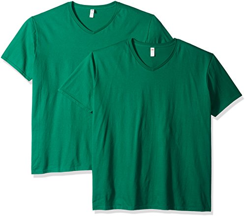 Fruit of the Loom Men's V-Neck T-Shirt (2 Pack), Clover, Medium ()