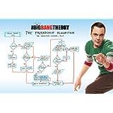 1art1 62829 Big Bang Theory Poster - Freundschafts-Algorithmus, 91 x 61 cm