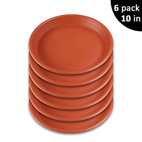 GROWNEER 6-Pack 10 Inch Plant Saucer Drip Trays, Round Plastic Plant Pot Saucers Flower Pot Set for Indoor Outdoor Garden, Clay Color ()