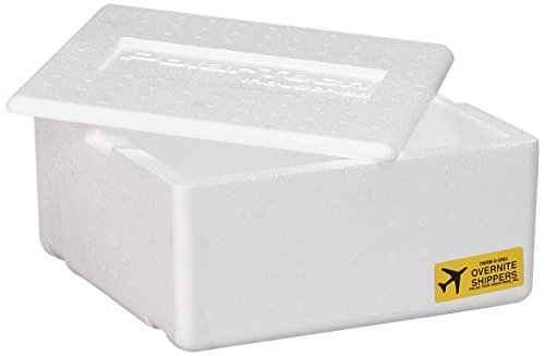 ICE AGE ON17F/4 Thermo Chill Overnite Containers (Pack of 4) (Shipping Boxes With Styrofoam)