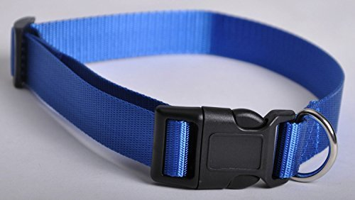 Cutequeen Trading Blue Utility Extra Large 1-Inch Martingale Heavyduty Nylon Dog Collar