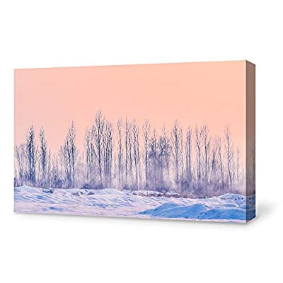 Canvas Wall Art Canvas Winter Forest Snow Painting Wall Poster Decor for Living Room Framed Home Decorations - 12x18 inches