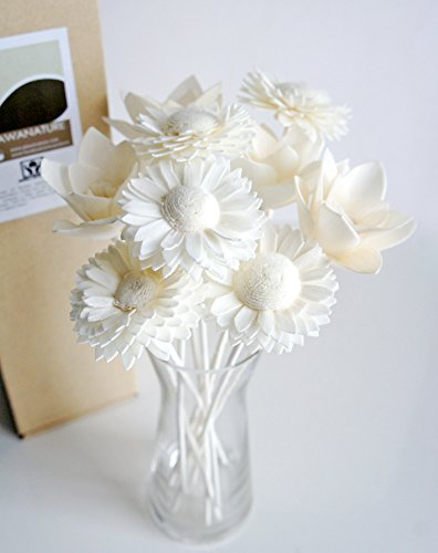 Plawanature Set of Mixed White Lily and Daisy Sola Flower with Reed Diffuser Replacement for Home Fragrance.