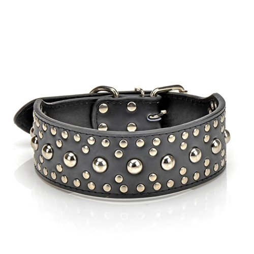 "HindaWi 2"" Wide Black Leather Studded Large Dog Collar Fit 21""-24"" Neck"