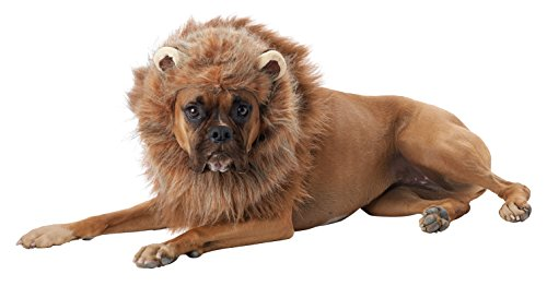 California Costumes Collections PET20166 King of The Jungle Dog Costume, Large