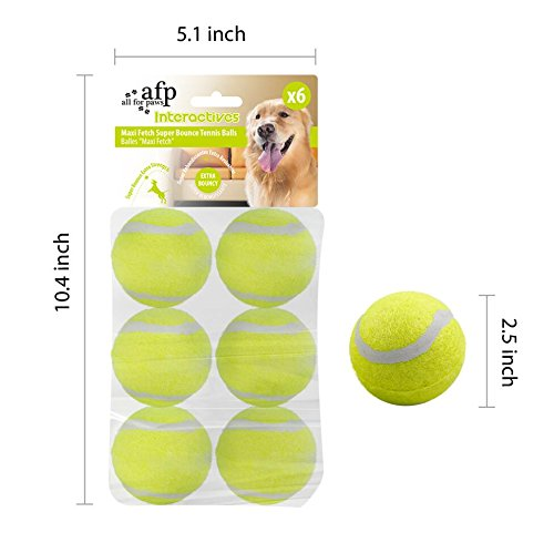 ALL FOR PAWS Hyperfetch Ultimate Throwing Toy (Maxi Ball 2.5 -