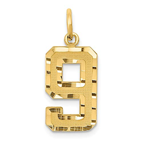 JewelrySuperMart Collection 14k Yellow Gold Diamond-Cut Number Nine Charm Pendant - # 9 - Yellow Gold - Medium
