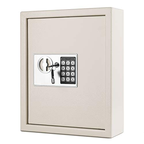 Flexzion Key Cabinet with Electronic Digital Lock (Gray), Wall Mounted Key Box 40 Key Capacity Colored Tags & Hooks - Safe Organizer, Security Storage Locker System for Homes, Hotels, Schools