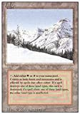 Magic: the Gathering - Taiga - Revised Edition