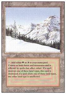 Magic: the Gathering - Taiga - Revised Edition