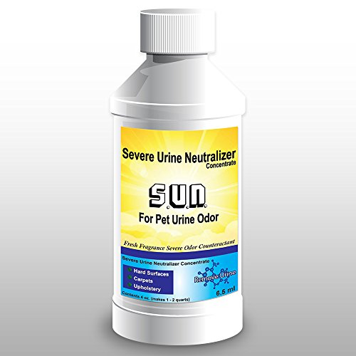 Severe Urine Neutralizer for Dog and Cat Urine - Best Odor Eliminator and Stain Remover for Carpet, Hardwood Floors, Concrete, Mattress, Furniture, Laundry, Turf by Remove Urine (Best Way To Get Rid Of Pee Smell)