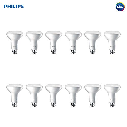 Dimmable Energy Efficient Flood Lights in US - 7