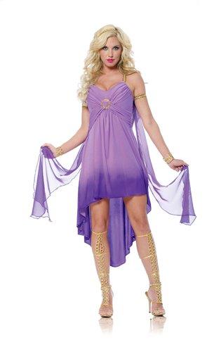 [Roman Goddess Costume - Small - Dress Size 4-6] (Athena Adult Costumes)